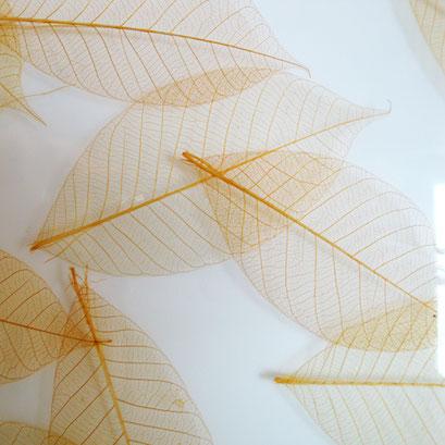 Blatt Strukturen in Designglas - Honey Leaf FE