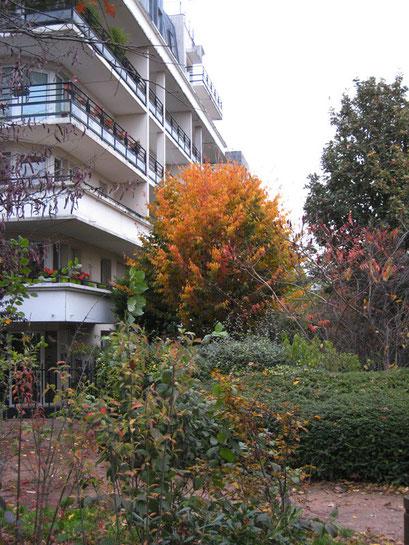 Coulée Verte du Sud Parisien -Châtillon - 16/11/2013