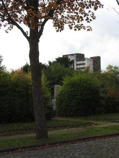 Cimetière Parisien de Bagneux - 9/11/2013