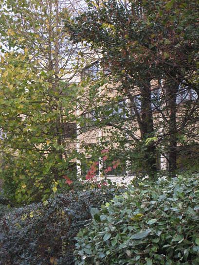 Coulée Verte du Sud Parisien -  Châtillon - 16/11/2013