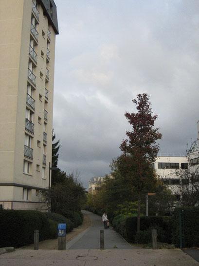 Coulée Verte du Sud Parisien - 16/11/2013