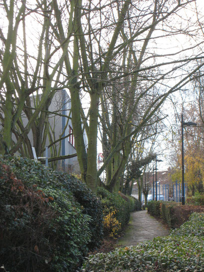 Coulée Verte du Sud Parisien - Châtillon - 14/12/2013