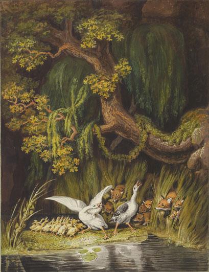 Gänsefamilie und Fuchsfamilie