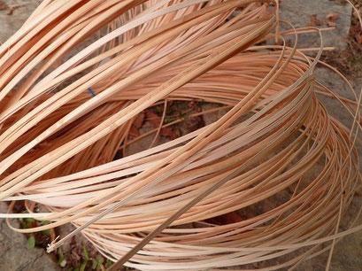 le matériau brut pour cannage: la canne de rotin