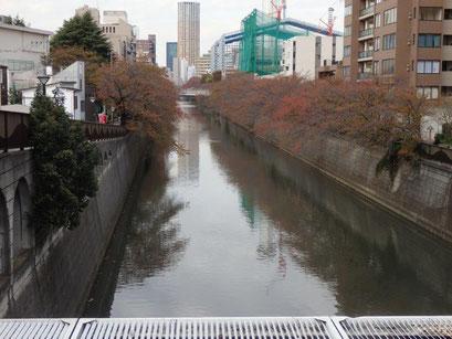 目黒川(目黒新橋)