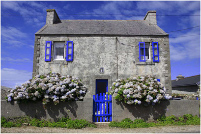 18-Maison bleue
