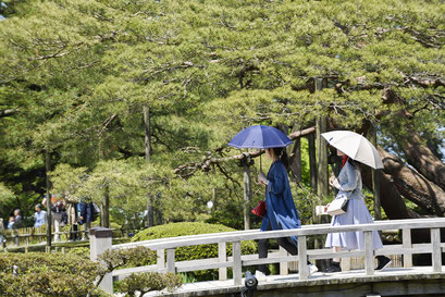 Kenroku-en le sublime jardin de Kanazawa