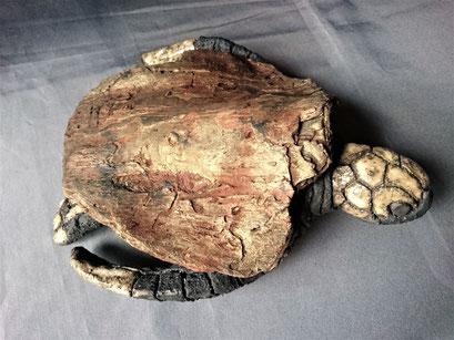 Fonds des océans 21 Petite tortue marine Grès noir émaillé et Bois flotté 20x25cm 2019