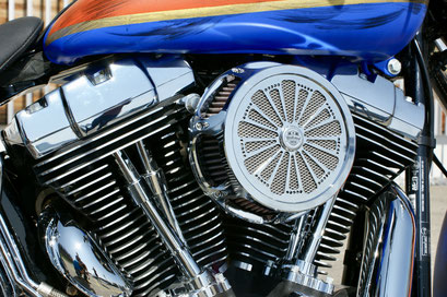 Harley Davdison Softail Deluxe Chicano with Midland