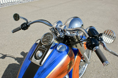Harley Davdison Softail Deluxe Chicano with Widebar