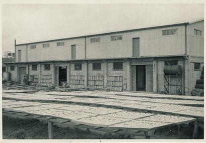 当時の社屋と塩干の様子