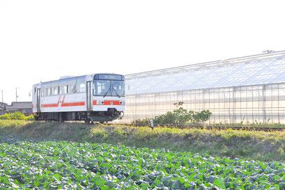 紀州鉄道 営業距離2.7キロメートルの西日本一短い鉄道。 北出病院最寄りの「学門駅」は駅名が「学問」に通じることから、学業御守として入場券や入場券を形取ったキーホルダーが販売され、全国の学生や受験生から注目を集めています。