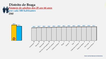 Distrito de Braga – Ordenação dos concelhos em função da percentagem de adultos com idades entre os 25 e os 64 anos (1960)