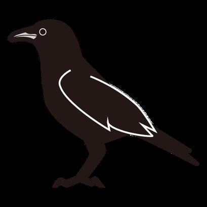 #crow #カラス