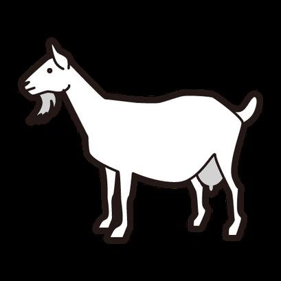 #goat #ヤギ