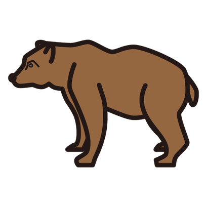 #bear #熊