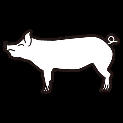 #pig #豚