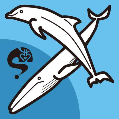 #dolphin #イルカ #whale #鯨