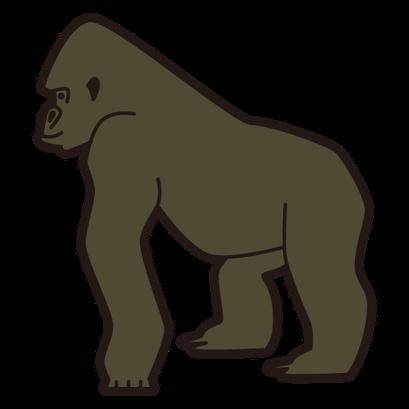 #gorilla #ゴリラ