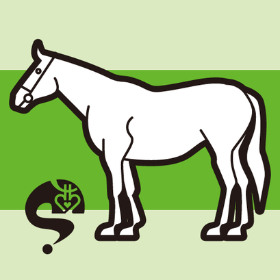 #horse #馬