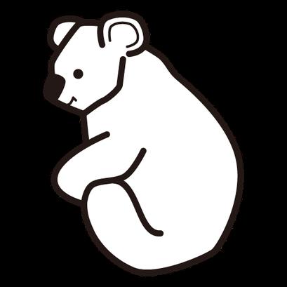 #koala #コアラ