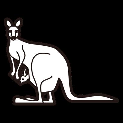 #kangaroo #カンガルー
