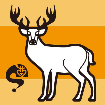 #deer #鹿