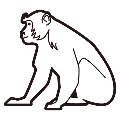 #monkey #猿
