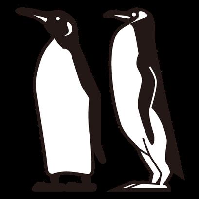 #penguins #ペンギン