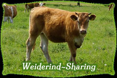 Weiderind-Sharing
