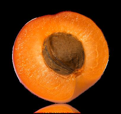 Geschmacksrichtung Aprikose