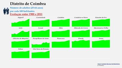 Distrito de Coimbra – Evolução do grupo etário dos 25 aos 64 anos