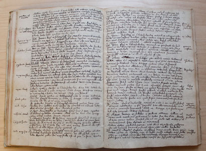 """Es wurden 657 Gebetserhörungen der Gläubigen im sogenannten """"Pinggauer Mirakelbuch"""" (Wallfahrtskirche Maria Hasel in Pinggau), das zwischen 1694 und 1781 verfasst wurde, aufgezeichnet."""