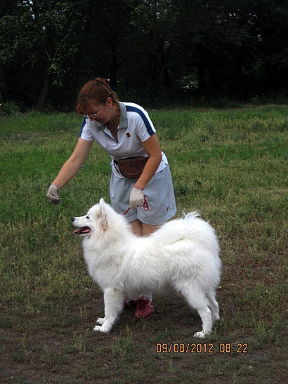Самоед Афина - кандидатка в юные чемпионы Украины