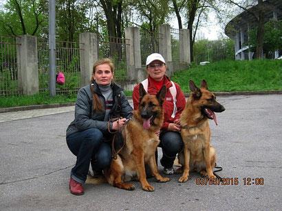 щенки немецкой овчарки дрессировка хэндлинг донецк продажа купить щенка