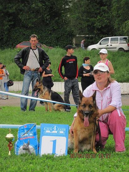 немецкие овчарки щенки донецк дрессировка собак хэндлинг