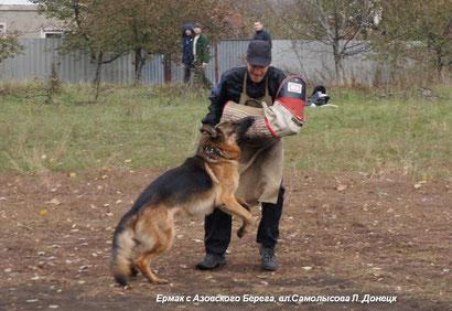 Работает Ермак с Азовского Берега, фигурант - Владимир Яремчук