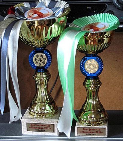 Кубок Яранта фон Нордэн  и Валерии фон Нордэн за победу на выставке в Макеевке