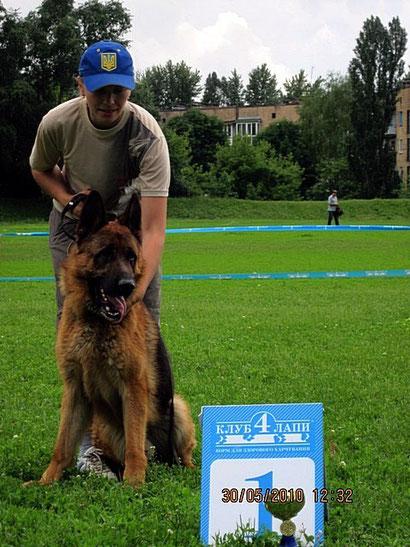 Победитель ринга в Донецке на монопородной выставке - Ярант фон Нордэн