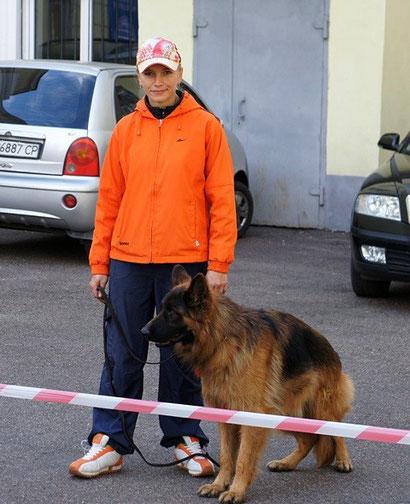 немецкие овчарки в донецке купить щенка питомник фон норден штерн дрессировка хендлер в донецке