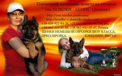 дрессировка собак в донецке щенки немецкой овчарки купить в донецке продажа щенков хэндлинг