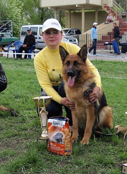 щенки немецкой овчарки дрессировка собак продажа щенков в донецке хэндлинг
