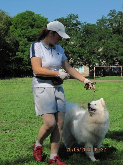 дрессировка собак в донецке хэндлинг продажа щенков немецкой овчарки