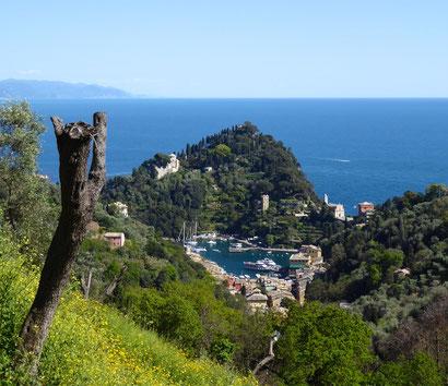 Portofino, Naturpark, Golf von Tigullio, Wandern, Ligurien