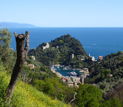 Blick auf Portofino