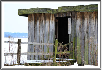 Haus am Hohner See