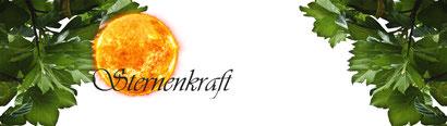 Rückführungen-Clearing-Hypnose-Channeling-Seminare und mehr...