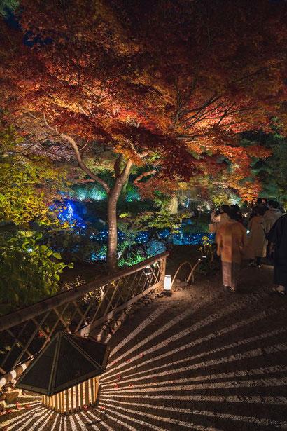 秋の嵐山宝厳院のライトアップ