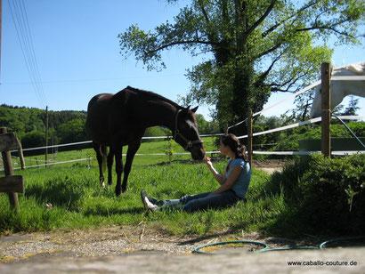 Pferdeerinnerungen, Erinnerung an Pferd, Pferdedecke, Tasche, Andenken Pferd, Pferdeandenken, Caballo Couture, Erinnerungsstücke, Erinnerung, Caballo, Pferd