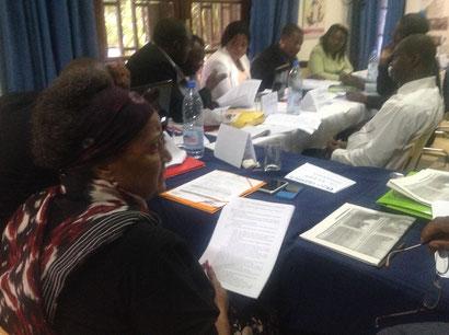 les députés et les sénateurs formulent leurs recommandations sur l'avant projet de loi